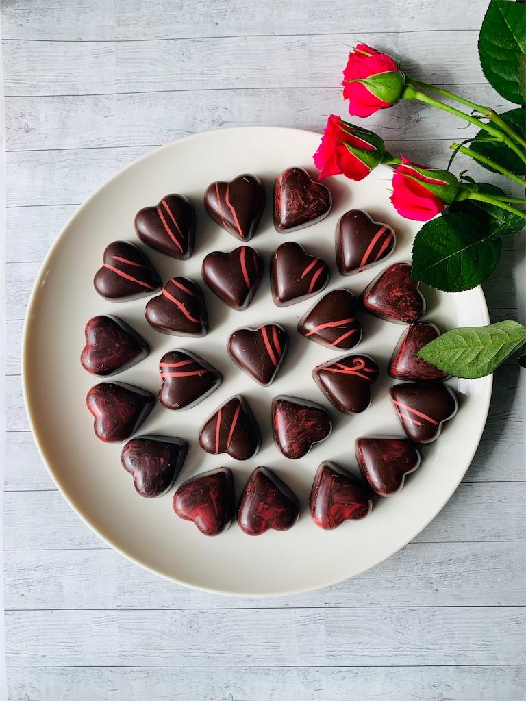f:id:cacaotree:20210220202517j:image