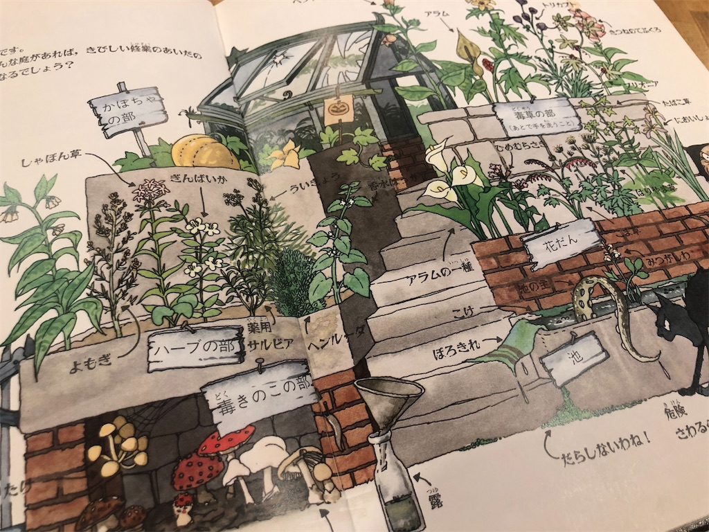 f:id:cactus-hakuba:20201006055418j:image