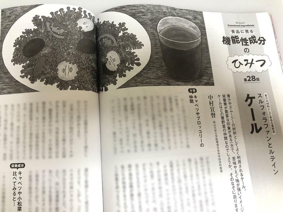 「栄養と料理」(女子栄養大学出版部)2020年10月号 連載「機能性成分のひみつ」第28回 ケール