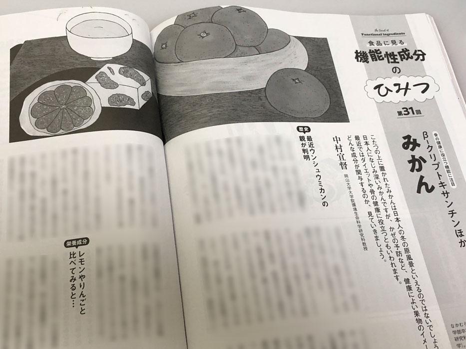 「栄養と料理」(女子栄養大学出版部)2021年1月号 連載「機能性成分のひみつ」第31回 みかん