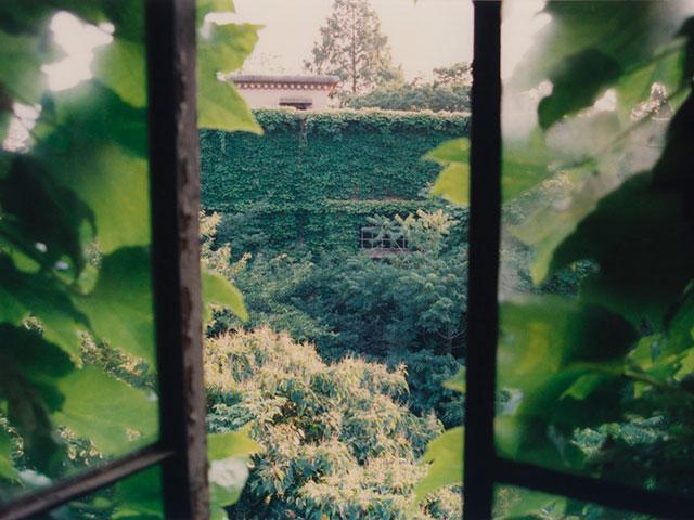 東大駒場寮 窓からの眺め(2001年撮影)