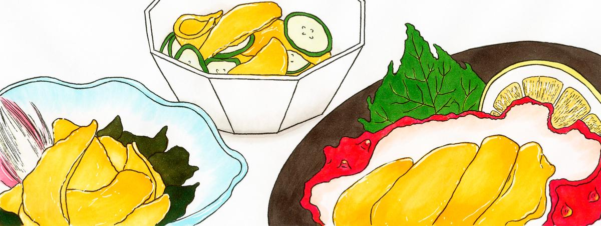 栄養と料理」(女子栄養大学出版部)2021年8月号 連載「機能性成分のひみつ」第38回 ホヤ