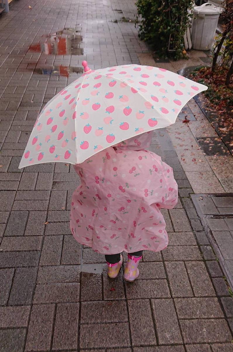 傘さすお嬢 2021/01/24