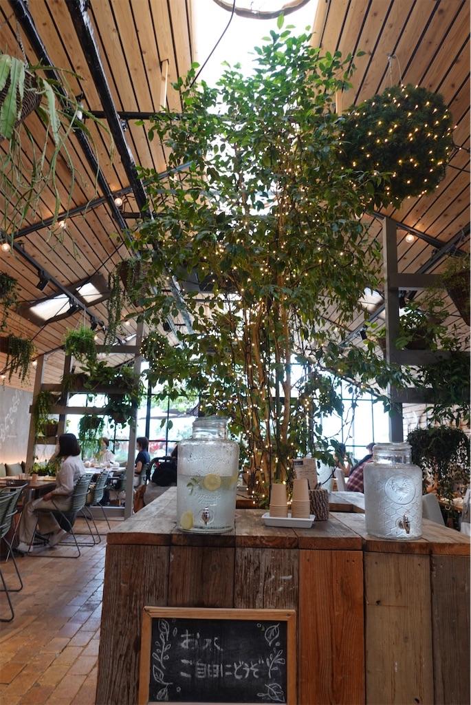 f:id:cafecafecafe:20210604232008j:image