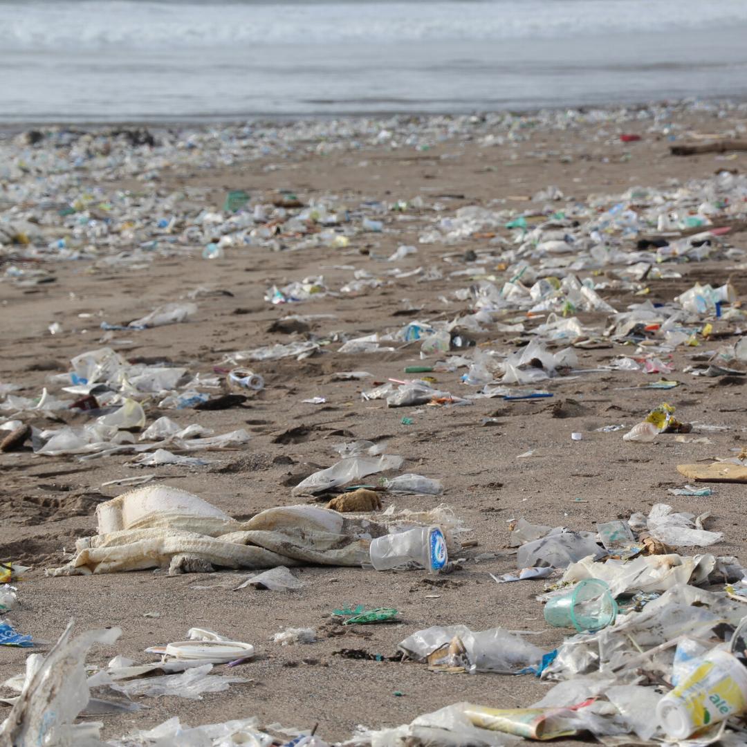 プラスチックごみで埋め尽くされた海岸
