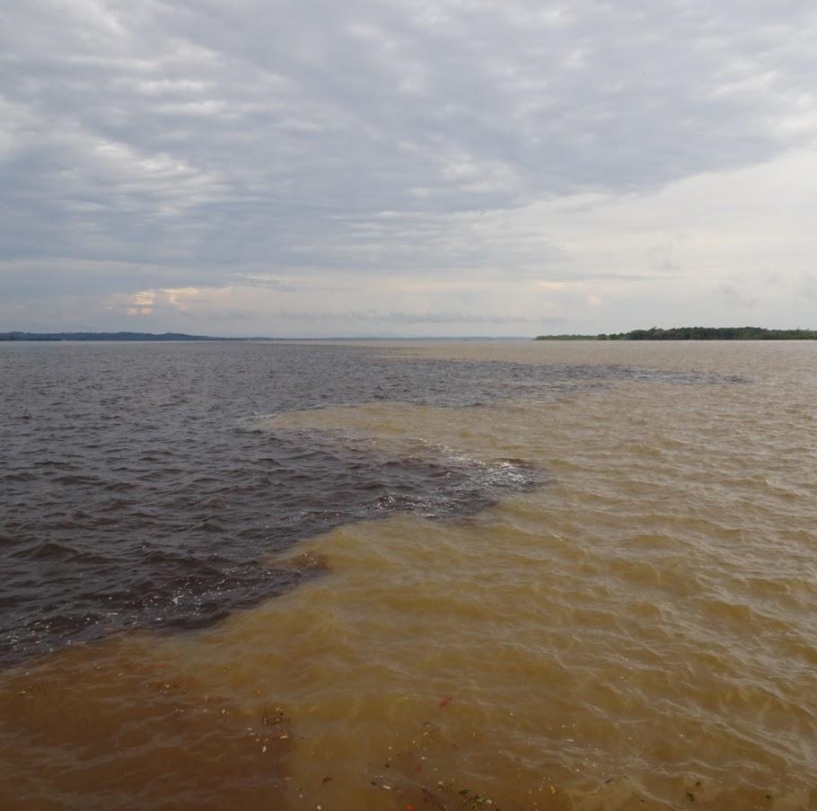 アマゾン川の合流地点。はっきりと2色に分かれている。