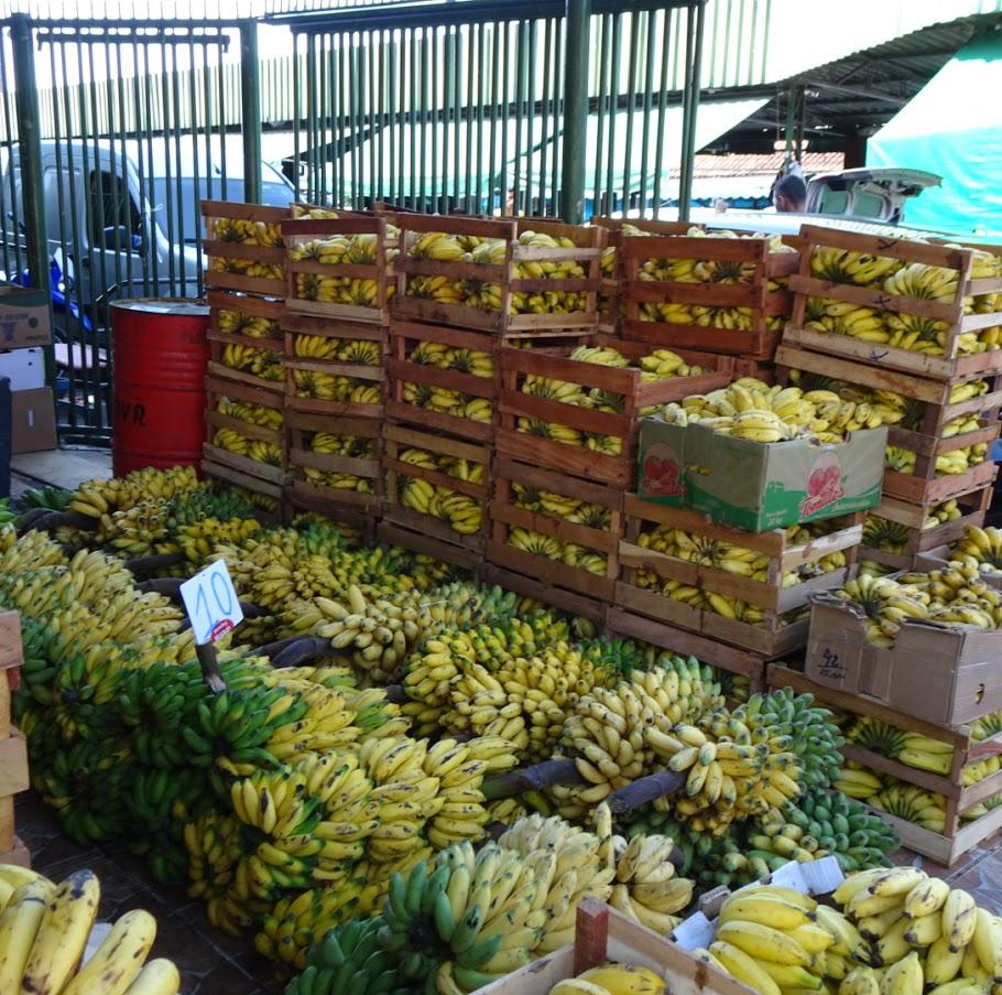 マナウスにある市場はバナナで埋め尽くされている。