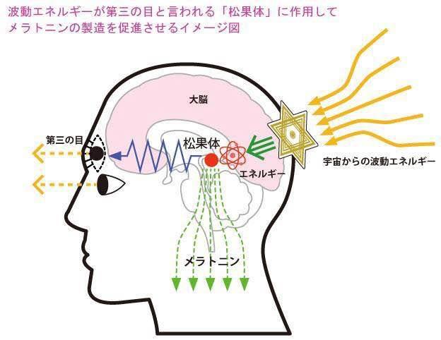 f:id:calm-haru2012:20170603215715j:plain