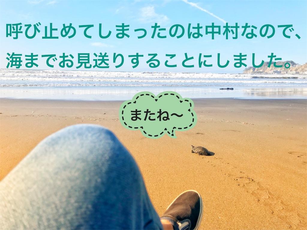 f:id:calm_earth:20180302192916j:image
