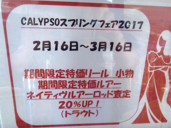 f:id:calypsoblog:20170215155649j:plain