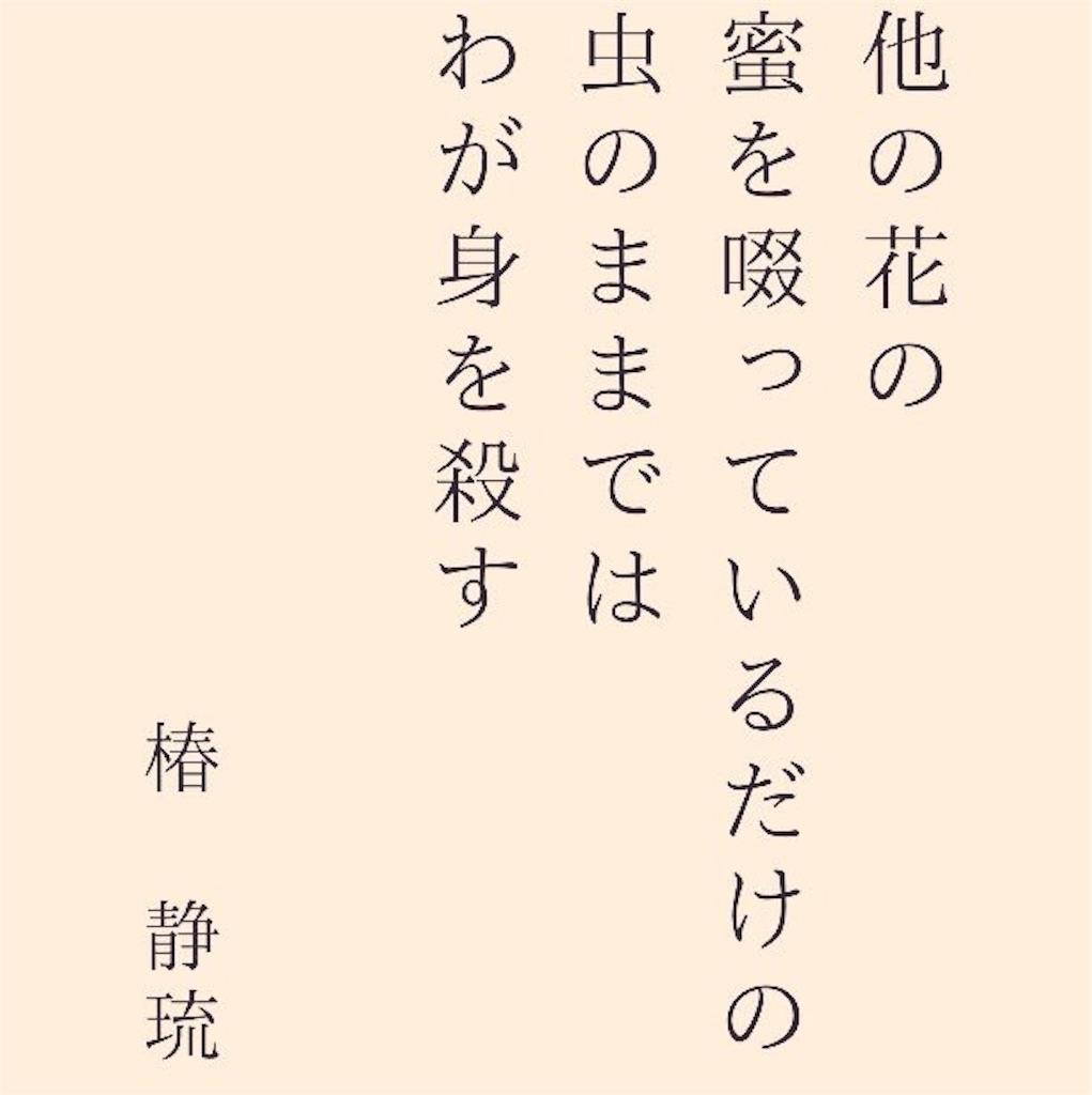 f:id:camellia22:20170401130522j:image
