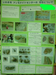 f:id:camelopardalis:20110406161408j:image