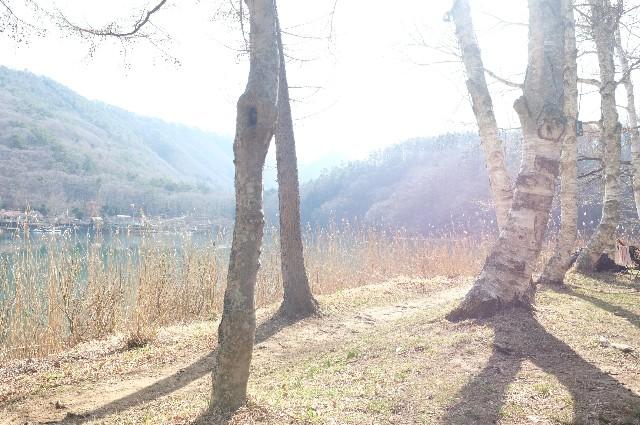 f:id:camera-yurucamp:20180920095415j:image