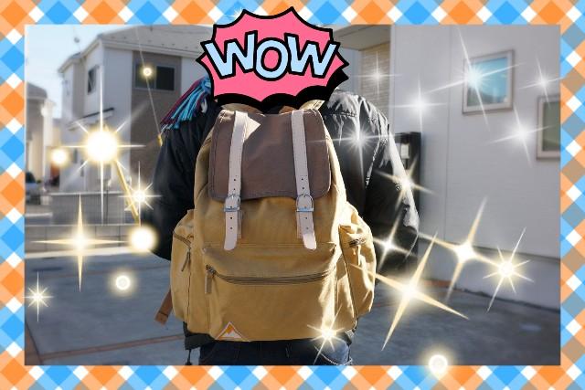 f:id:camera-yurucamp:20190112123306j:image