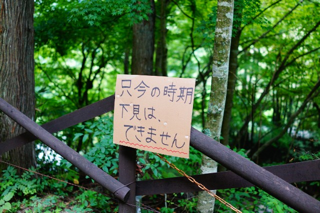 f:id:camera-yurucamp:20200825074158j:image