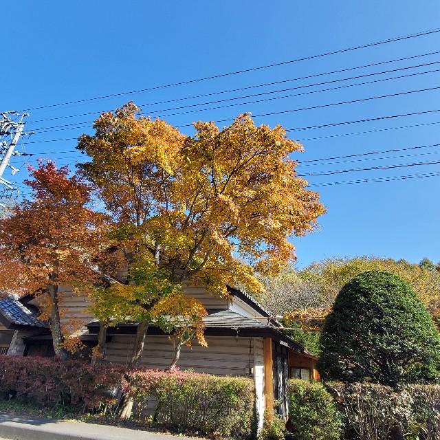 f:id:camera-yurucamp:20201103170208j:image
