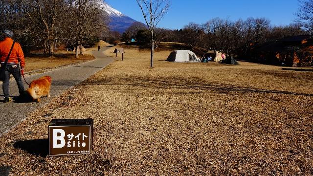 f:id:camera-yurucamp:20210304154451j:image