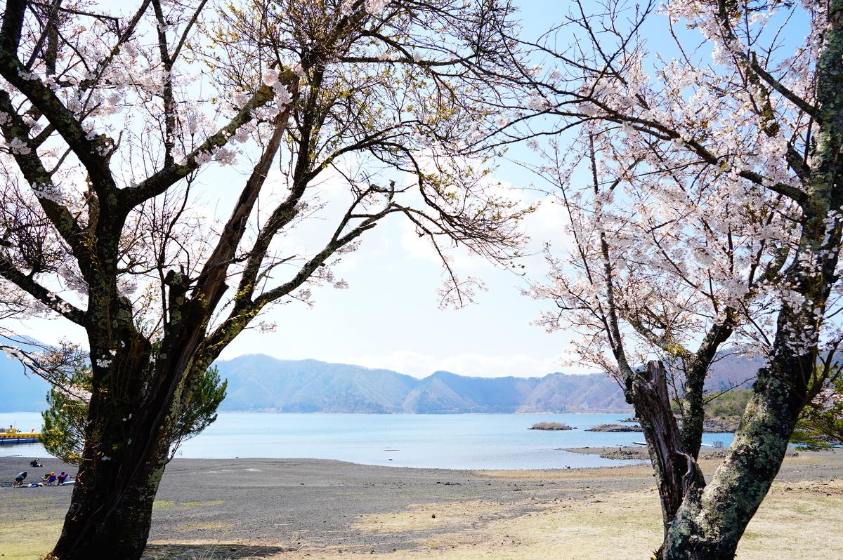 f:id:camera-yurucamp:20210503213747j:plain