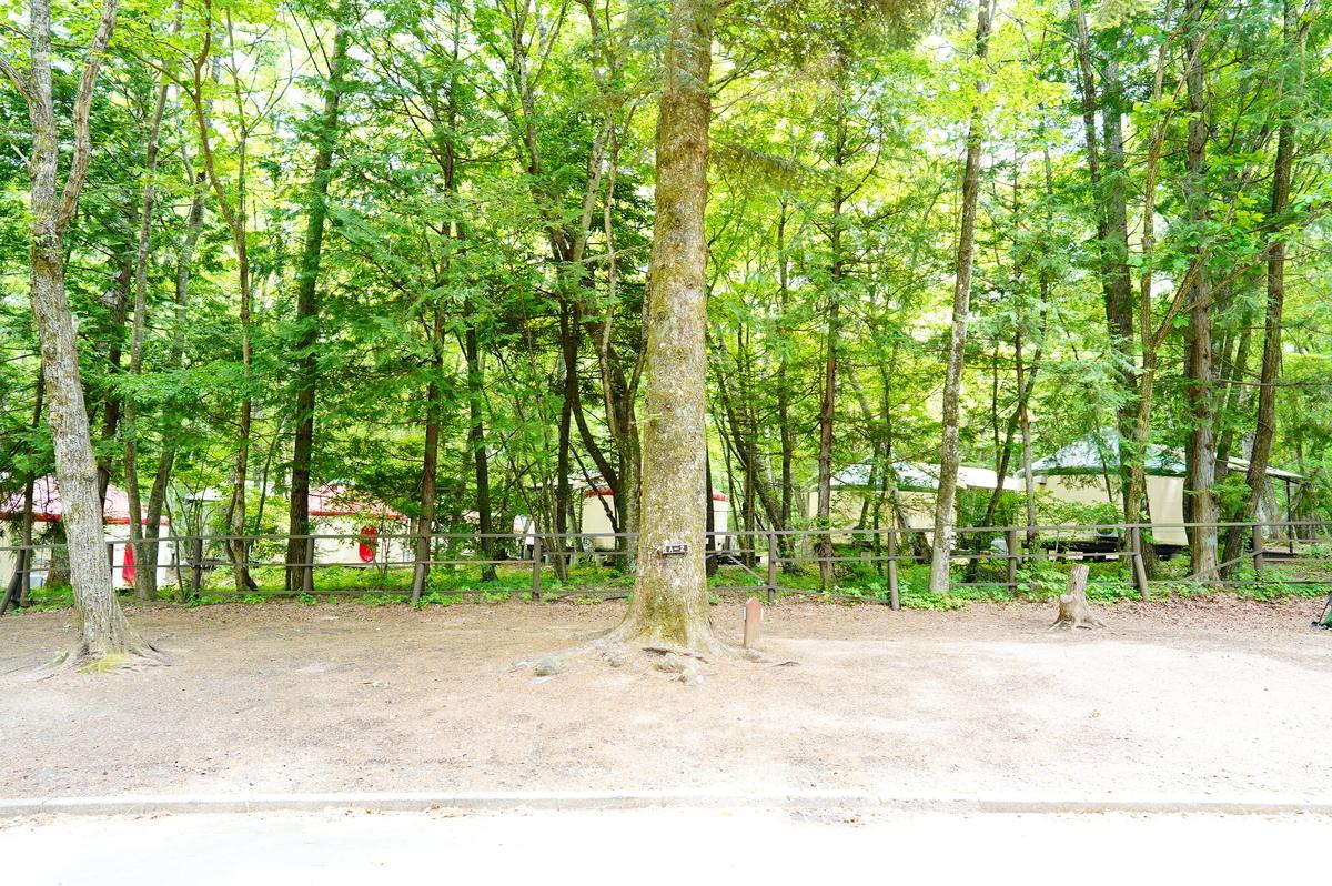 f:id:camera-yurucamp:20210707183140j:plain
