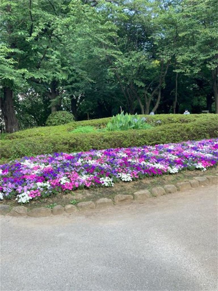 王子飛鳥山の花壇