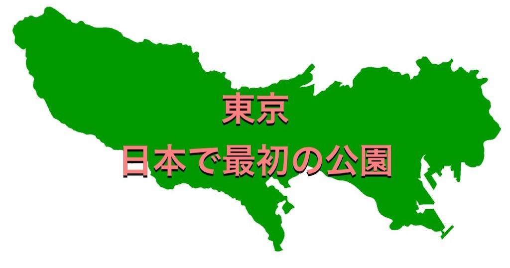 f:id:camiin_nihonichi:20210630233806j:image
