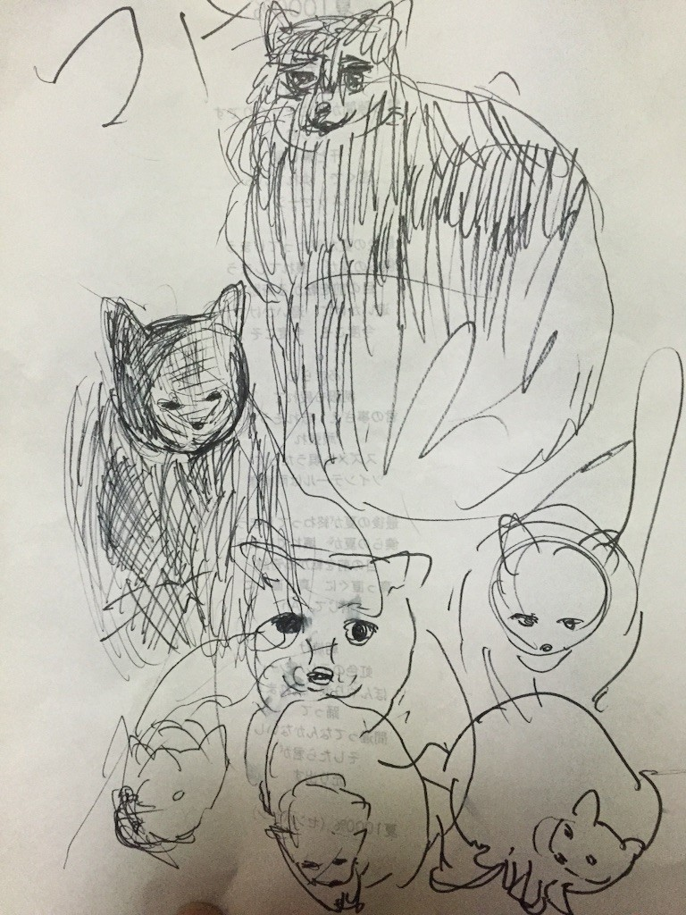 f:id:camisama-chanel:20170125012528j:image