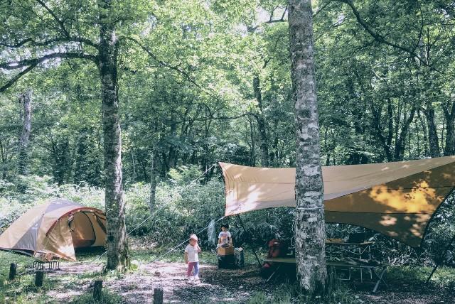 f:id:camp-camp-camp:20170711224233j:image