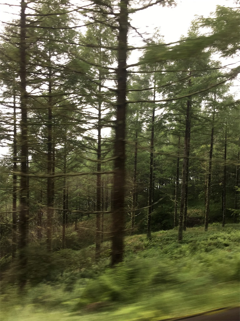 f:id:camp-camp-camp:20170729224852j:image