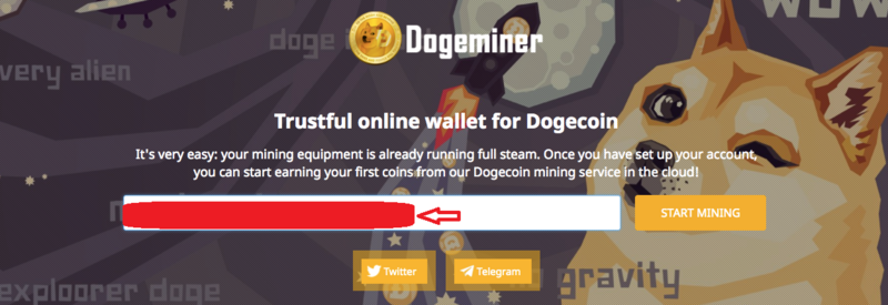 DOG3.png