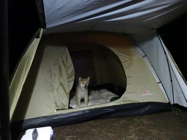 f:id:campcamp35:20180207100817j:image