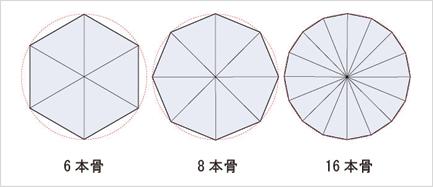 骨の数による表面積の違い