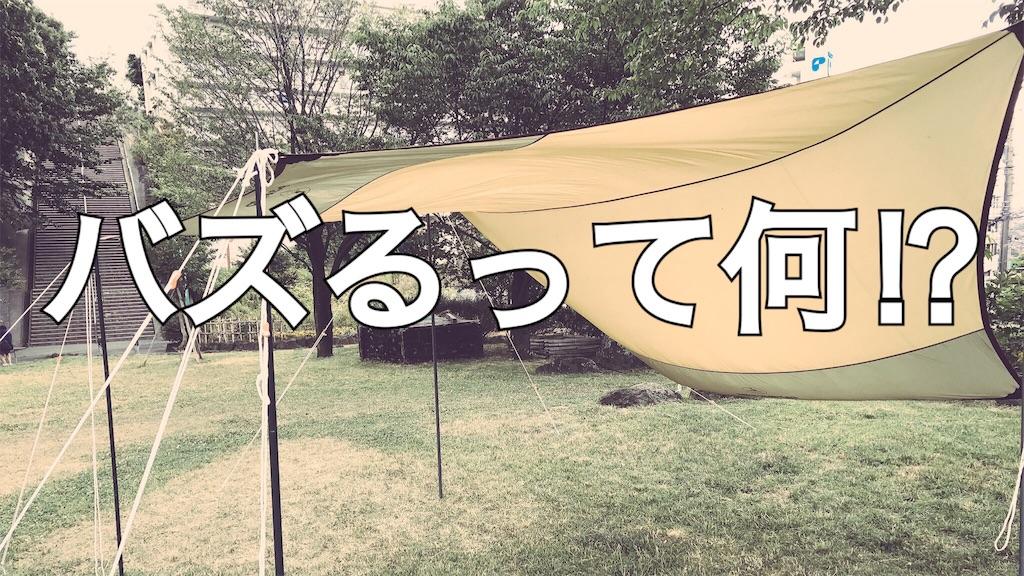 f:id:campmedaka:20170620150502j:image
