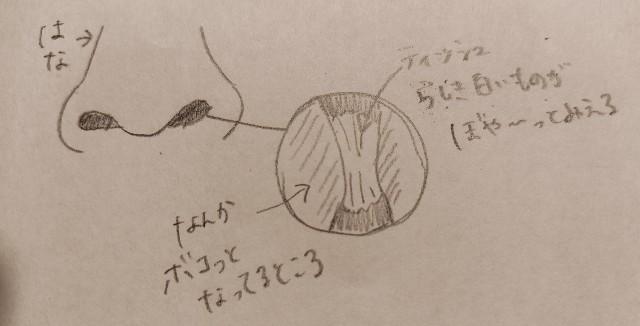 f:id:campsan:20201209231516j:plain