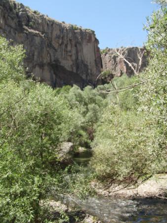 f:id:canarykanariiya:20120821125708j:image