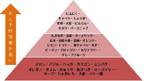 f:id:cancer-prevention:20171127033437j:plain