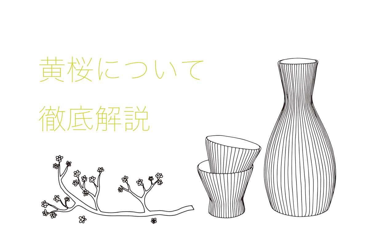 黄桜の日本酒を徹底解説!味の特徴は?どんなこだわりがあるの?|theDANN media