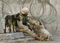 イラクの野良犬、駐留米兵に引き取られ米国へ