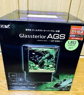GEXグラステリアアグス