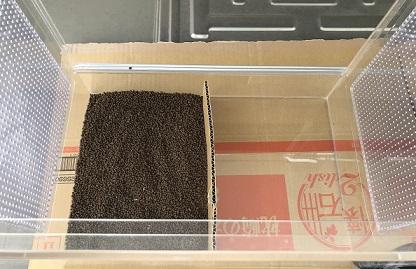 レオパードゲッコー飼育の床材