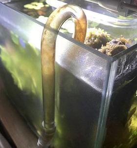 汚れた吸水ガラスパイプ