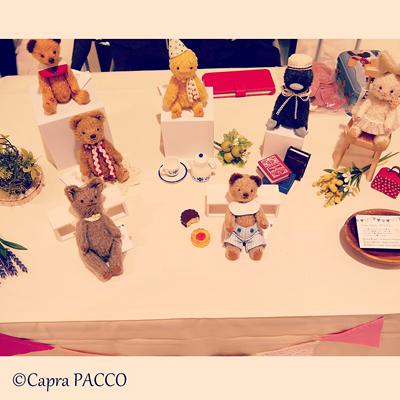 f:id:capra-pacco:20181115233918j:plain
