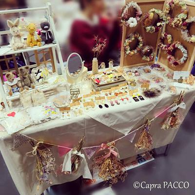 f:id:capra-pacco:20181203103004j:plain