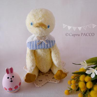 f:id:capra-pacco:20200408000451j:plain