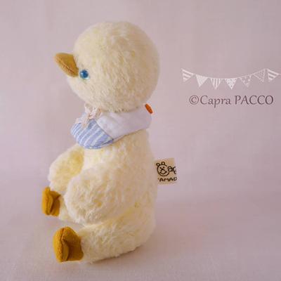 f:id:capra-pacco:20200408000529j:plain