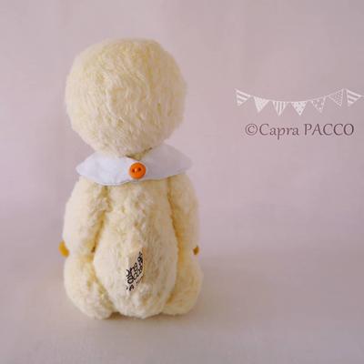 f:id:capra-pacco:20200408000549j:plain