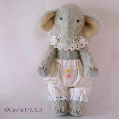 f:id:capra-pacco:20200430182744j:plain