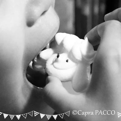 f:id:capra-pacco:20200504080447j:plain