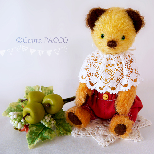 f:id:capra-pacco:20200704160155j:plain