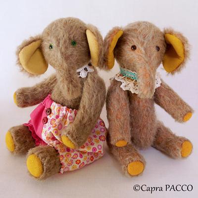 f:id:capra-pacco:20201211211859j:plain
