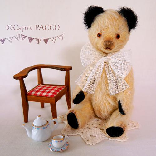 f:id:capra-pacco:20210123200925j:plain